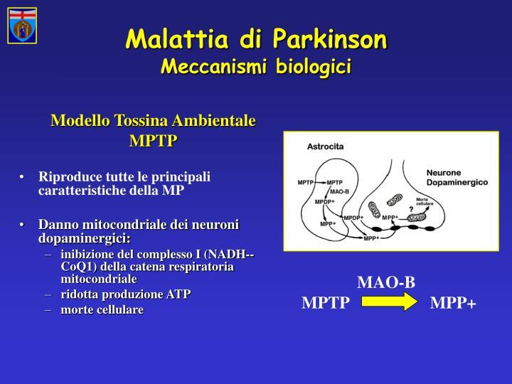 Malattia di Parkinson