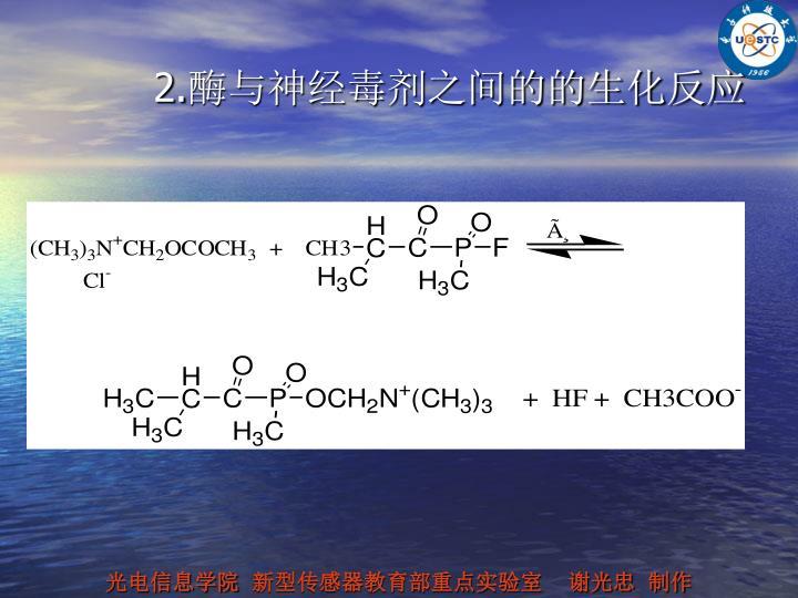 2.酶与神经毒剂之间的的生化反应