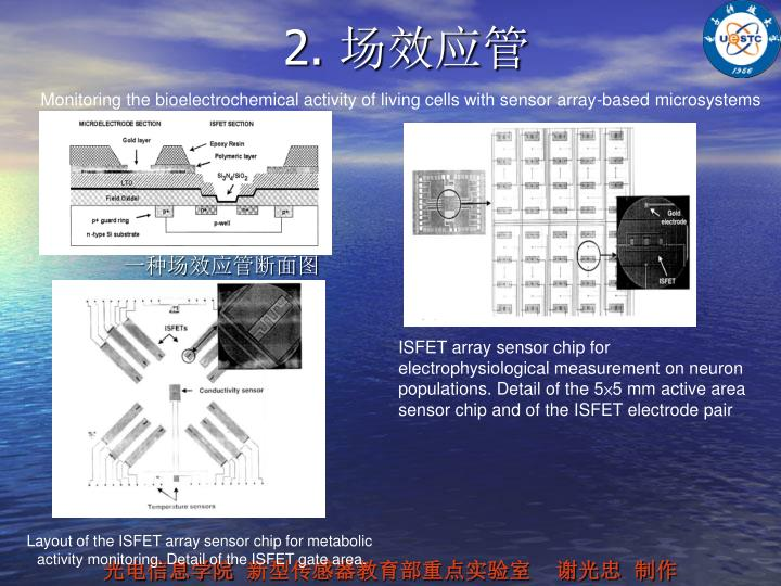 ISFET array sensor chip for electrophysiological measurement on neuron populations. Detail of the 5