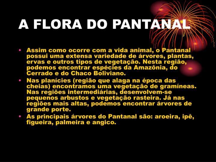 A FLORA DO PANTANAL