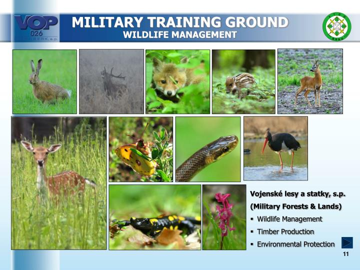 MILITARY TRAINING GROUND
