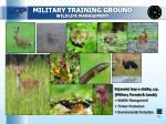 military training ground wildlife management