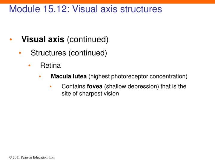 Module 15.12: Visual axis structures