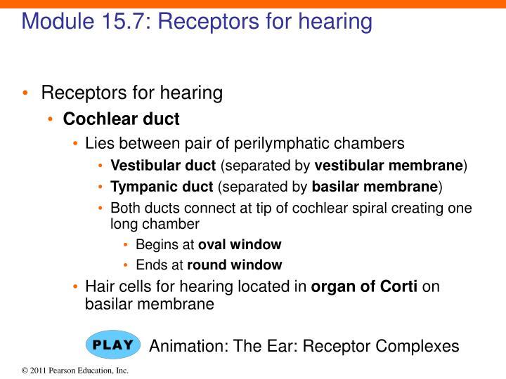 Module 15.7: Receptors for hearing