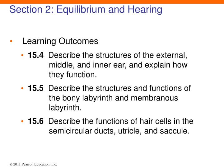 Section 2: Equilibrium and Hearing