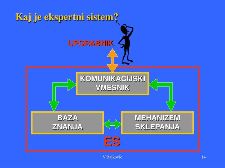 Kaj je ekspertni sistem?