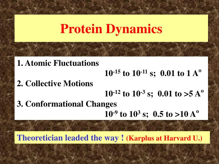 Protein Dynamics