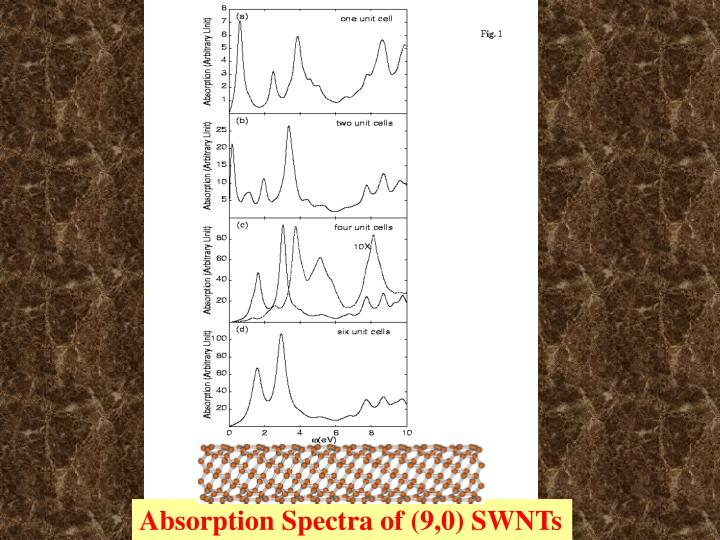 Absorption Spectra of (9,0) SWNTs