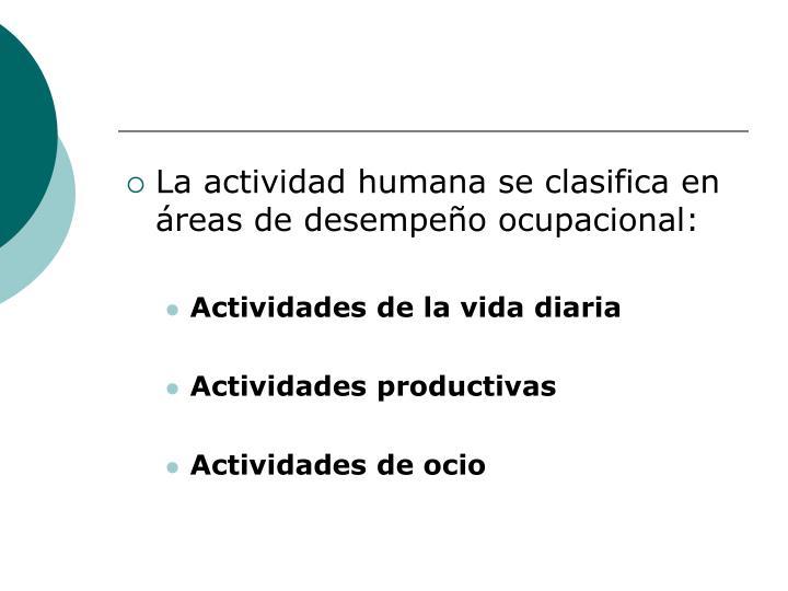 La actividad humana se clasifica en áreas de desempeño ocupacional: