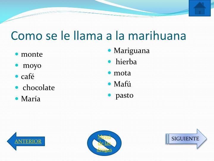 Como se le llama a la marihuana