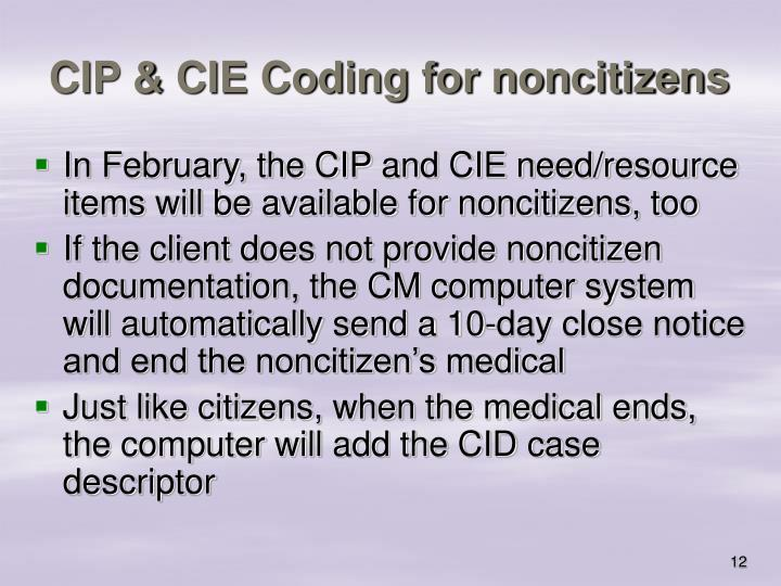 CIP & CIE Coding for noncitizens
