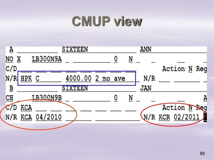 CMUP view