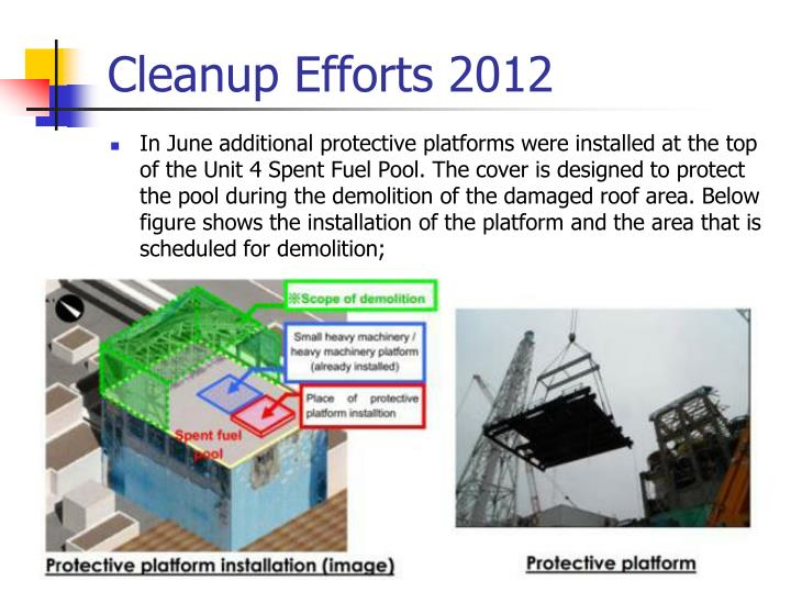 Cleanup Efforts 2012