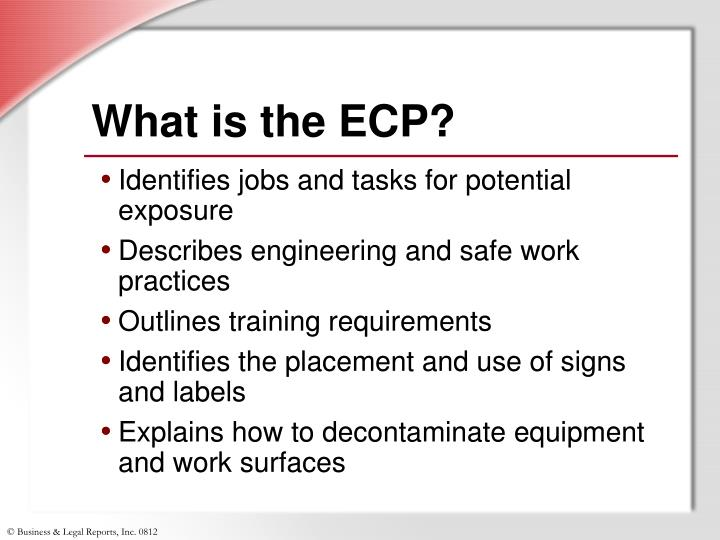 What is the ECP?