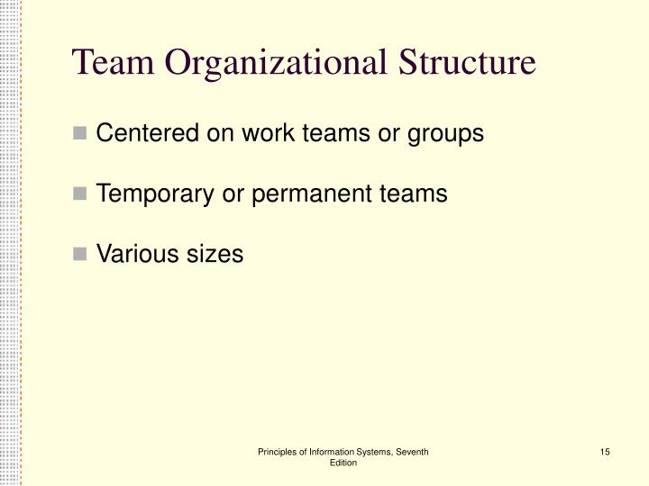 Team Organizational Structure