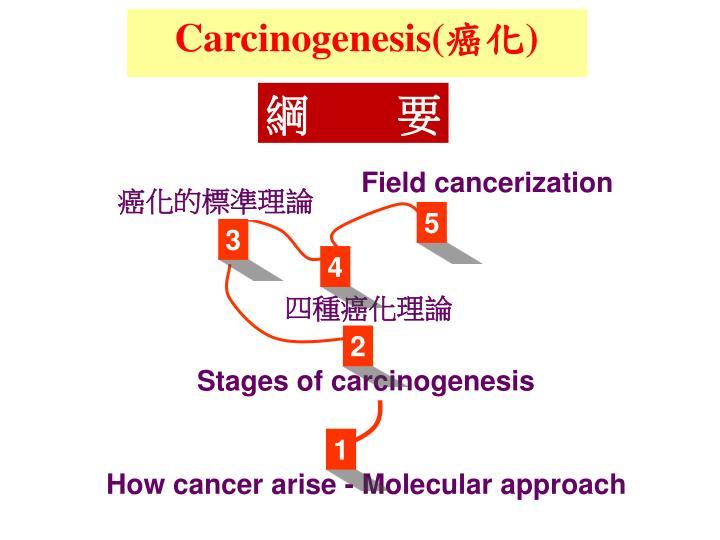 Carcinogenesis(