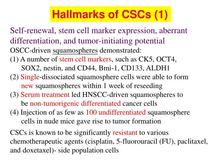 Hallmarks of CSCs (1)