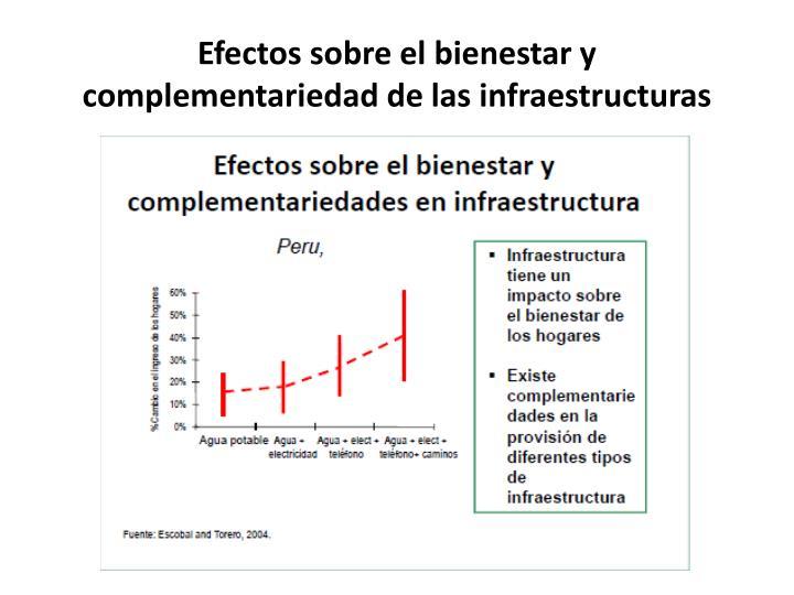 Efectos sobre el bienestar y complementariedad de las infraestructuras