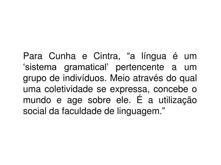 """Para Cunha e Cintra, """"a língua é um 'sistema gramatical' pertencente a um grupo de indivíduos. Meio através do qual uma coletividade se expressa, concebe o mundo e age sobre ele. É a utilização social da faculdade de linguagem."""""""