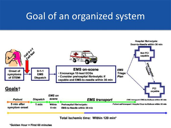 Goal of an organized system