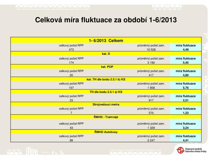 Celková míra fluktuace za období 1-6/2013