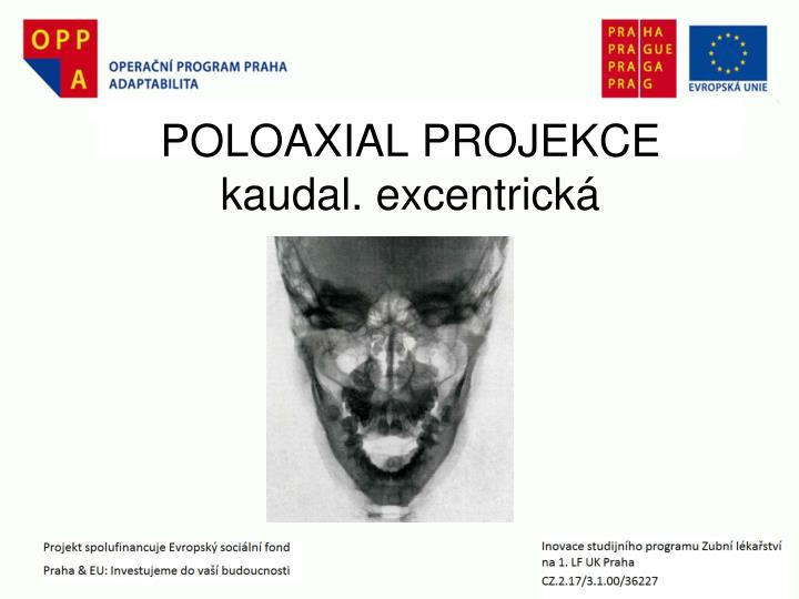 POLOAXIAL PROJEKCE