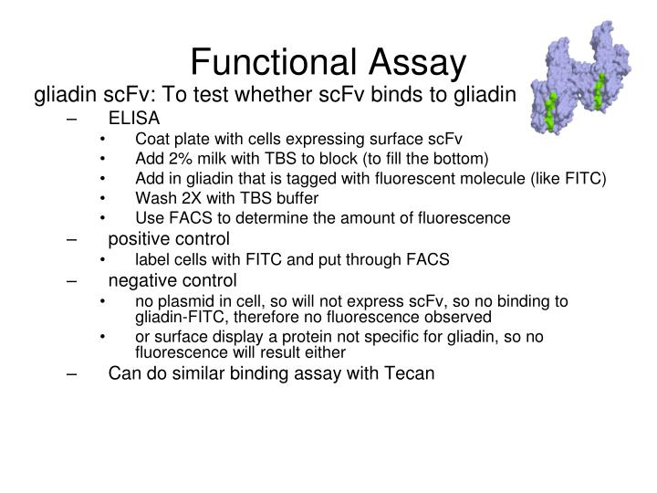 Functional Assay