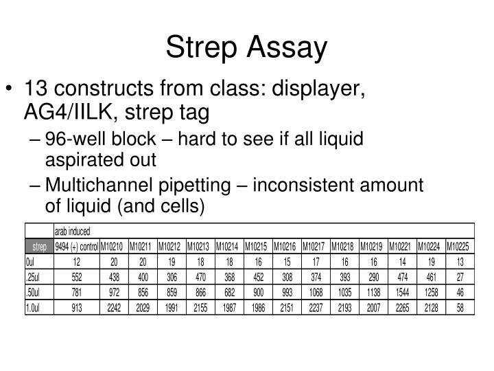 13 constructs from class: displayer, AG4/IILK, strep tag