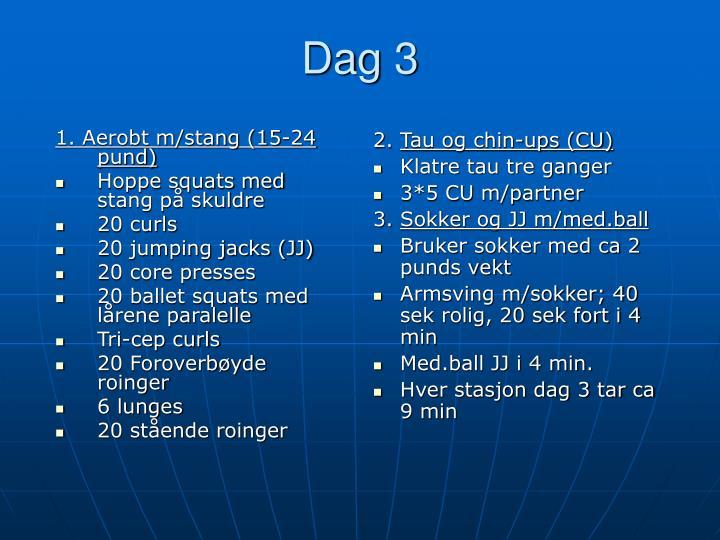 1. Aerobt m/stang (15-24 pund)