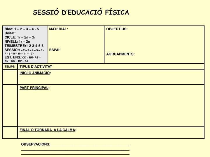 SESSIÓ D'EDUCACIÓ FÍSICA