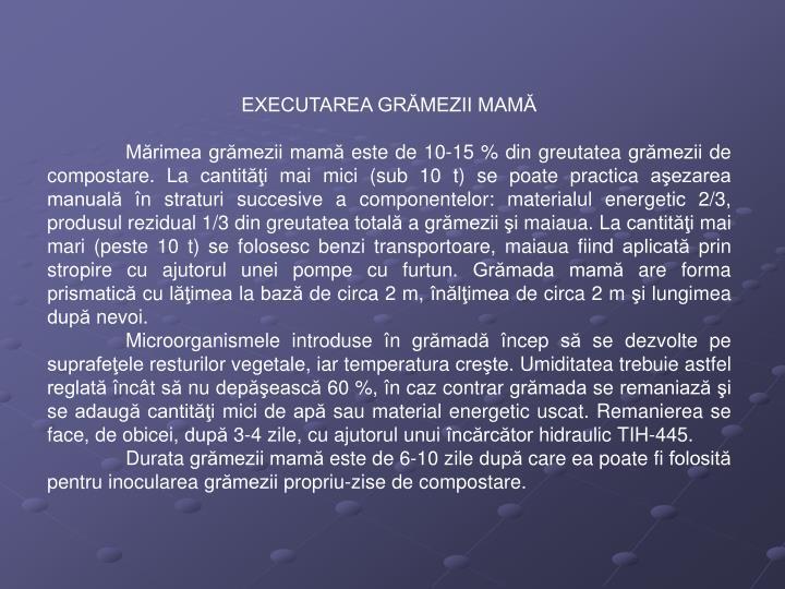 EXECUTAREA GRĂMEZII MAMĂ