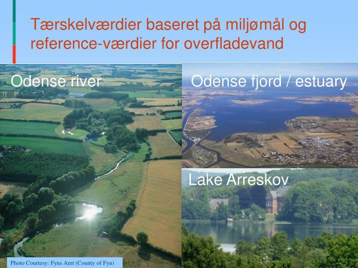 Tærskelværdier baseret på miljømål og reference-værdier for overfladevand