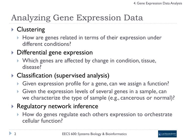 Analyzing gene expression data