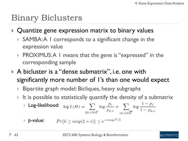 Binary Biclusters