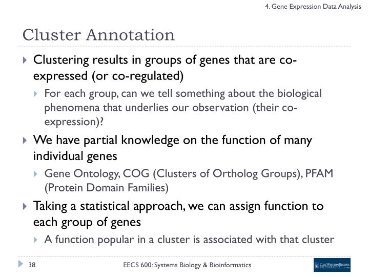 Cluster Annotation