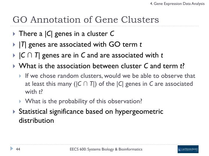 GO Annotation of Gene Clusters