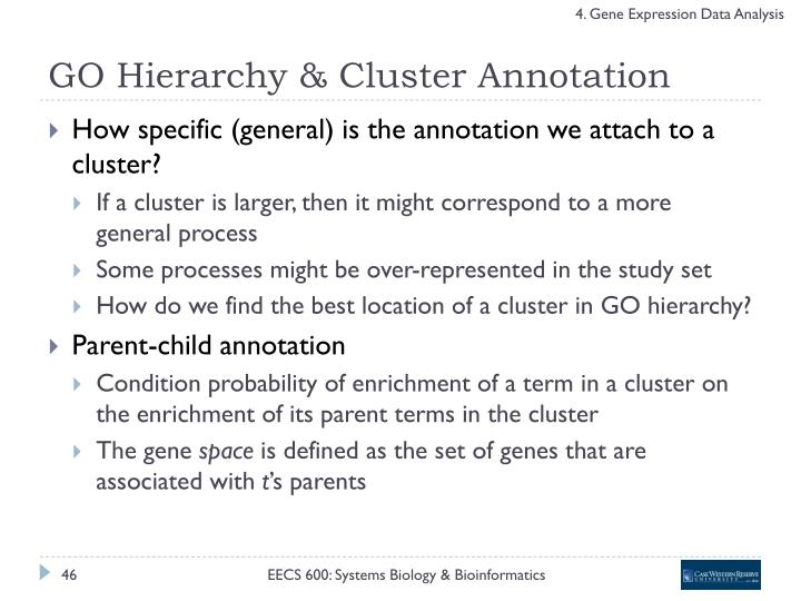 GO Hierarchy & Cluster Annotation