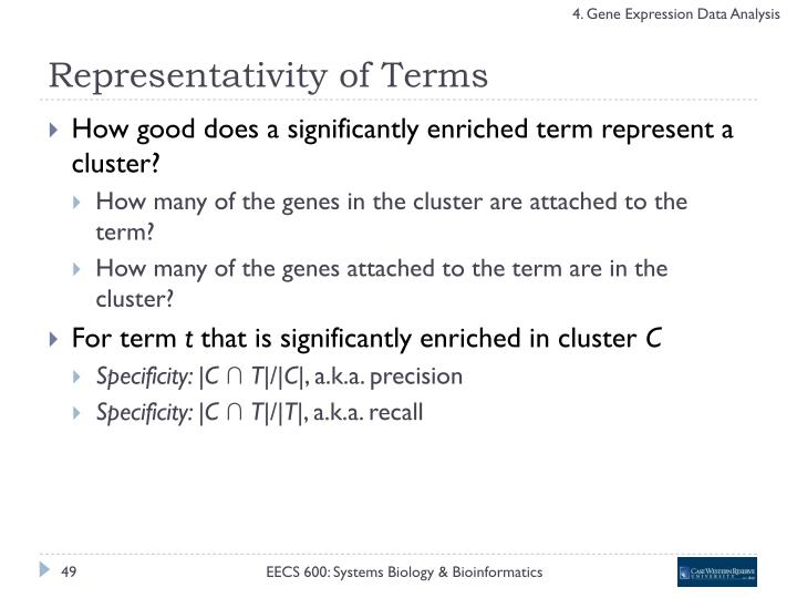 Representativity of Terms