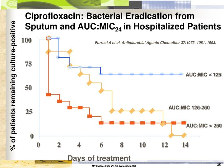 Ciprofloxacin: Bacterial Eradication from