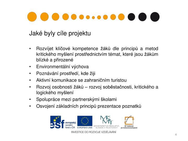 Jaké byly cíle projektu