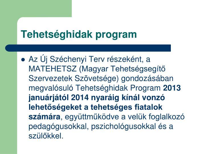Tehetséghidak program