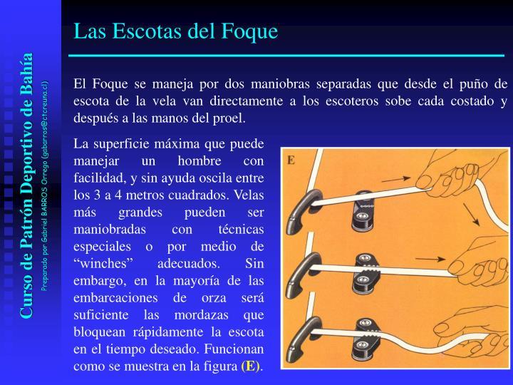 El Foque se maneja por dos maniobras separadas que desde el puño de escota de la vela van directamente a los escoteros sobe cada costado y después a las manos del proel.