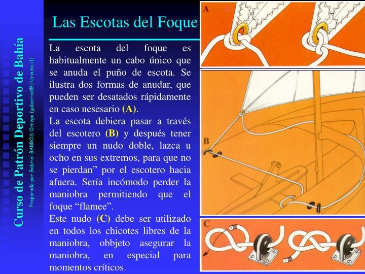 La escota del foque es habitualmente un cabo único que se anuda el puño de escota. Se ilustra dos formas de anudar, que pueden ser desatados rápidamente en caso nesesario
