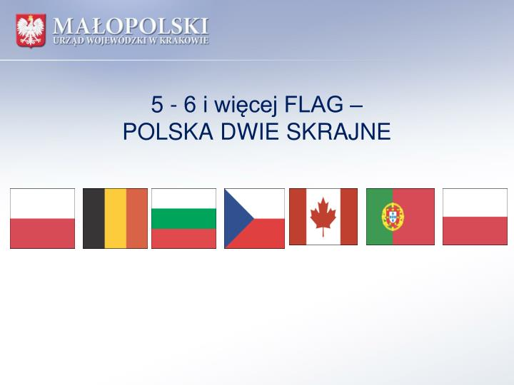 5 - 6 i więcej FLAG –