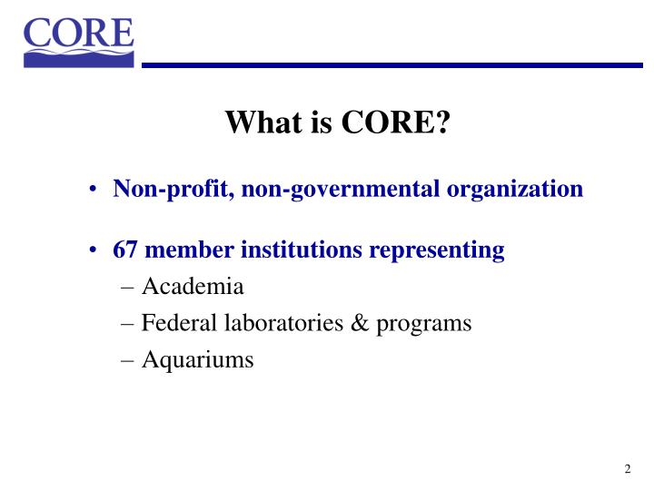 What is core