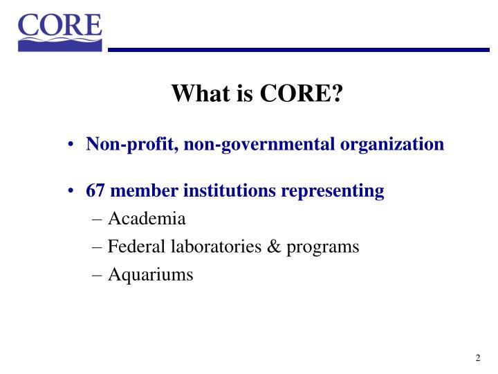 Non-profit, non-governmental organization