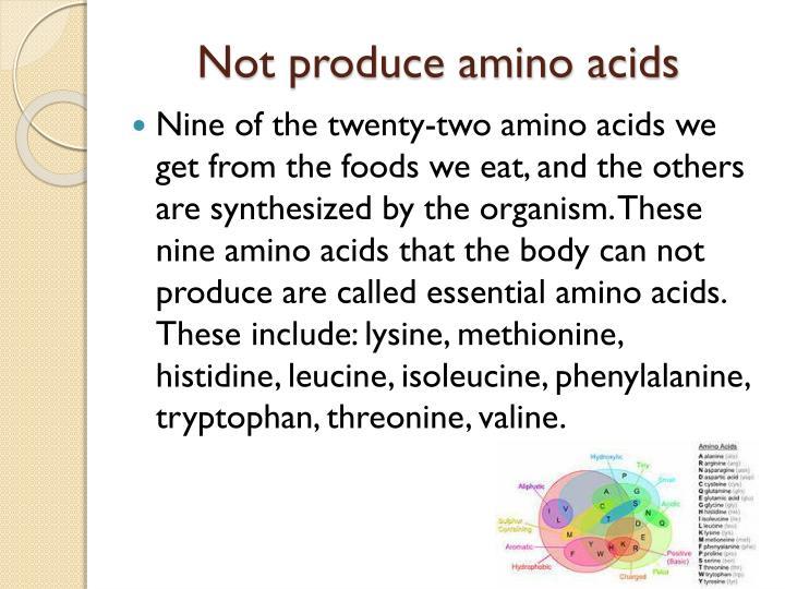 Not produce amino acids