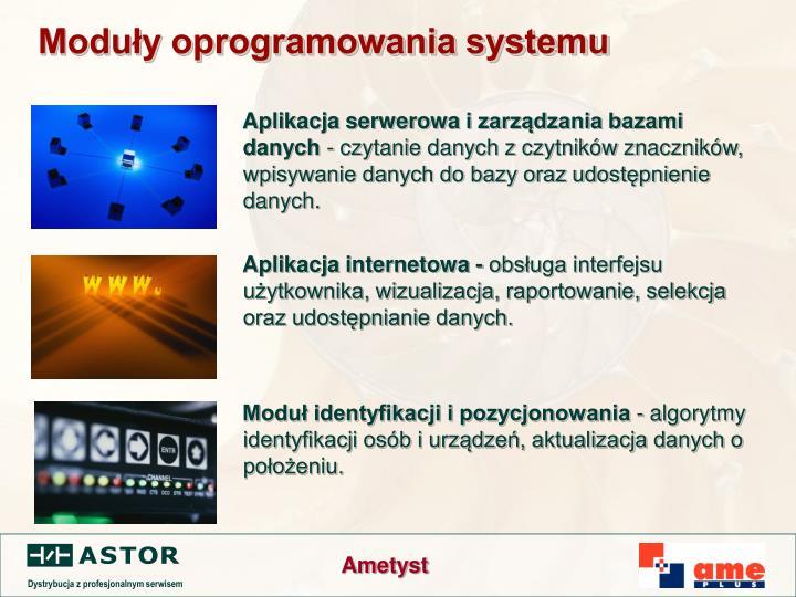 Moduły oprogramowania systemu