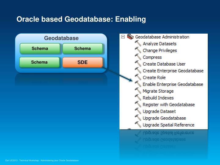 Oracle based Geodatabase: Enabling