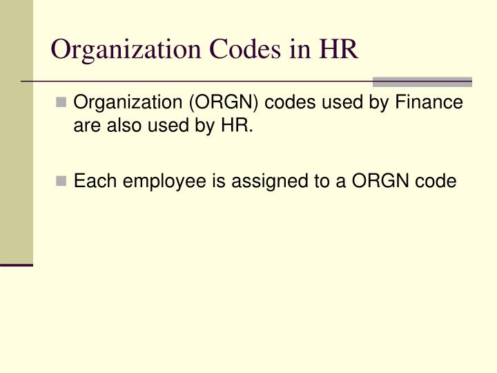 Organization Codes in HR